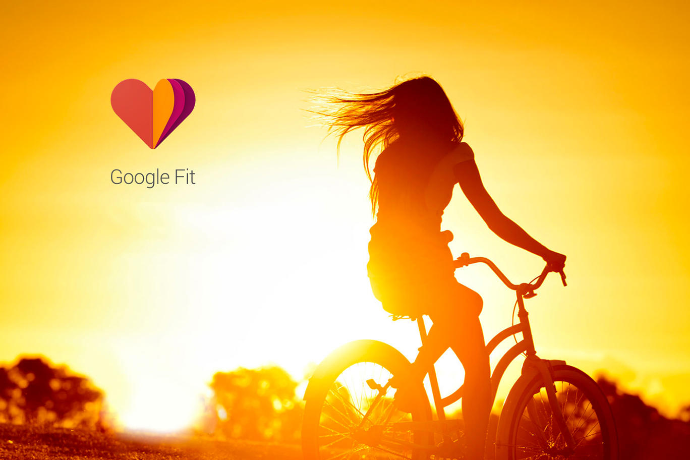 Getting your weight from Google Fit with C#